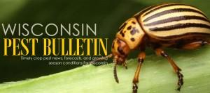 Wisconsin Pest Bulletin