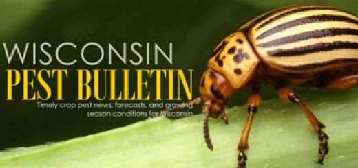 Wisconsin Pest Bulletin