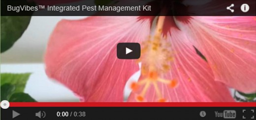 Integrated Pest Management Kit