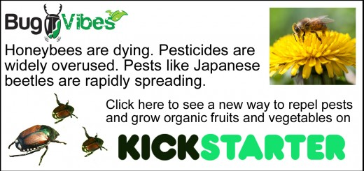 BugVibes and Kickstarter - Work to Reduce Pesticides