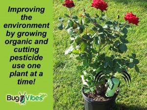 BugVibes Joins Kickstarter to Reduce World Pesticide Use